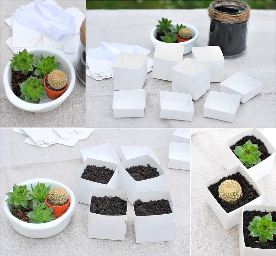 succulentes invités mariage cadeau DIY-min