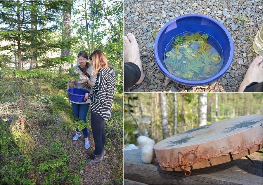 aventure forêt finlande