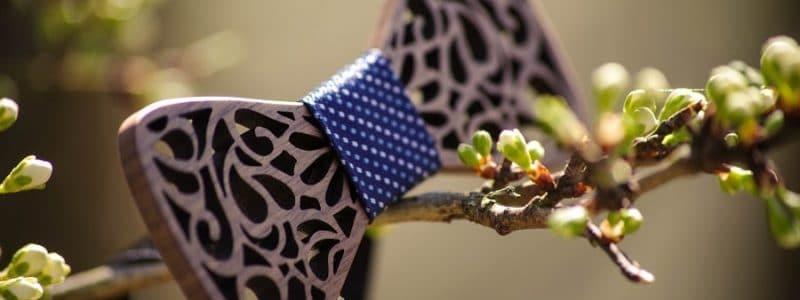Le noeud papillon tendance pour 2019